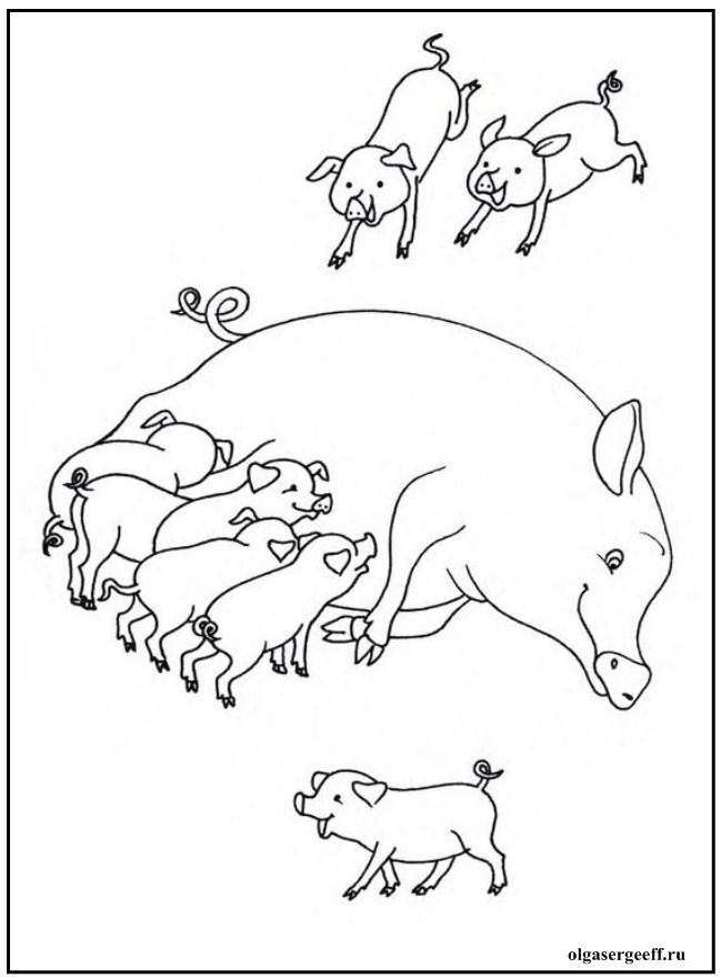 Рисунок домашнее животное заботится о потомстве